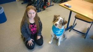 Bild Schulhund 3