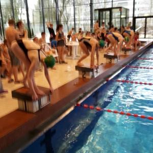 Foto Schwimmen 2016 3